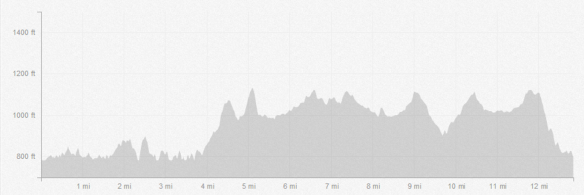 With almost 1,500 ft. of elevation gain, 70% on trails, this run takes some serious strategy